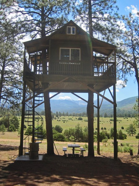 A Very Cool Tree House in Truchas, NM IMG 1264 450x600
