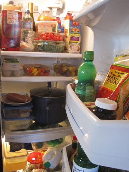 Evidence in the Refrigerator IMG 3547 450x600