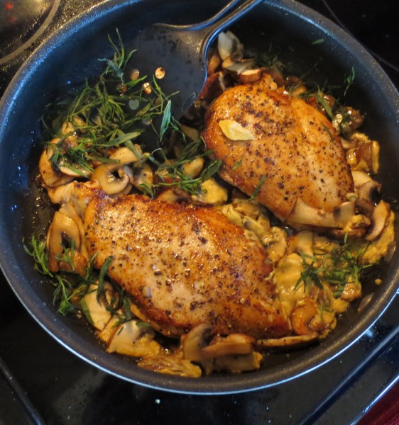 A Great Holiday Supper: Taragon Chicken With Mushrooms IMG 1047 562x600